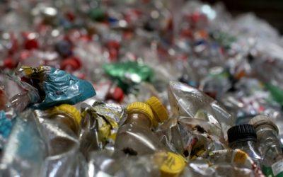 Conocé cómo se reciclan las botellas PET en Uruguay y su impacto positivo